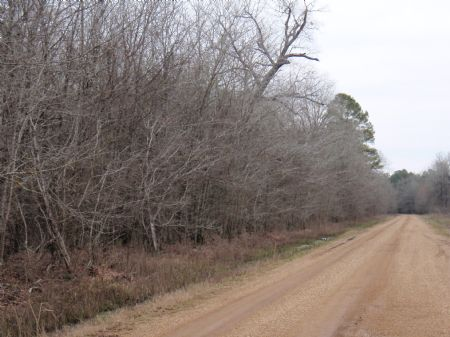 Lower Chemin-A-Haut Tract : Monroe : Morehouse Parish : Louisiana