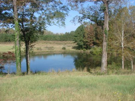 Cool Water Ranch : Draneville : Marion County : Georgia
