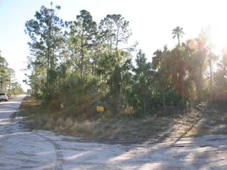 .34 Acre Residential Corner Lot : Sebastian : Indian River County : Florida