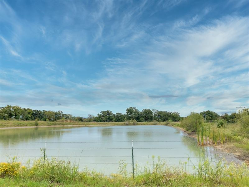 9 Acres Hwy 90 : Madisonville : Madison County : Texas