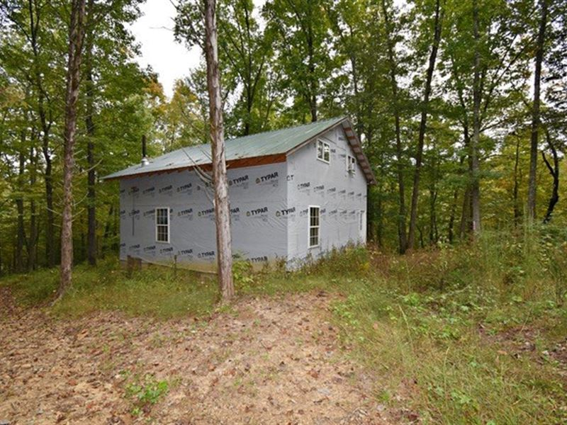 Private Unfinished Cabin, Creek & 9 : Linden : Perry County : Tennessee