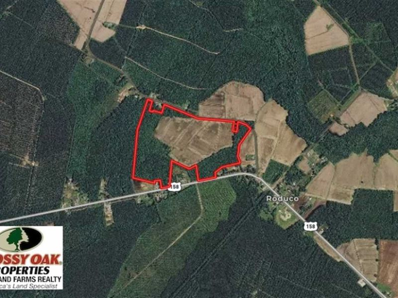 80 Acres of Farm And Hunting Land : Eure : Gates County : North Carolina