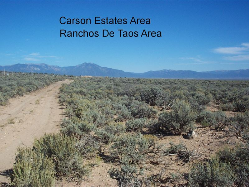 Carson National Forest, Nice Road : Carson : Taos County : New Mexico