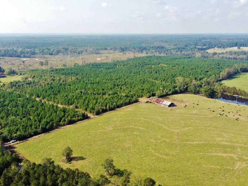 90 Acre Recreational Timberland Inv : Spearsville : Union Parish : Louisiana