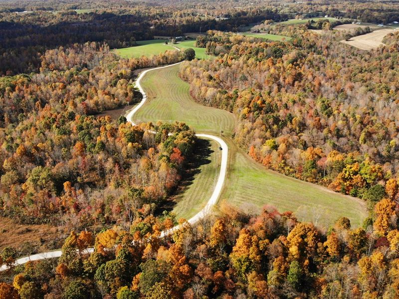 Private, Unrestriced Farm Land : Liberty : Casey County : Kentucky
