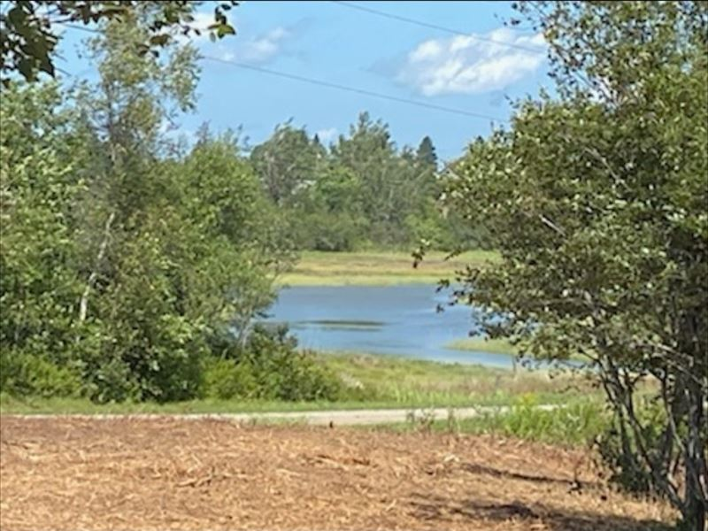 Coastal Waterfront Land For Sale : Addison : Washington County : Maine