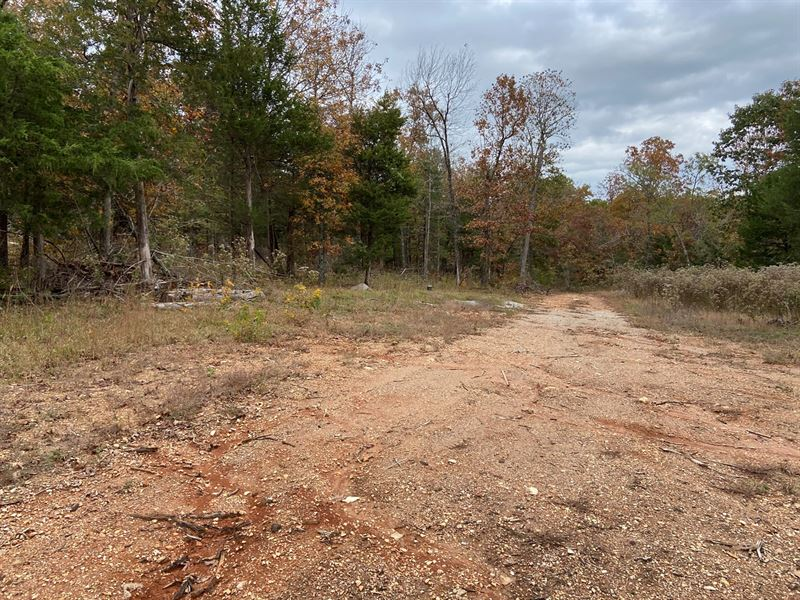 AR Hunting Land 10.6 Acres Arkansas : Ravenden Springs : Randolph County : Arkansas