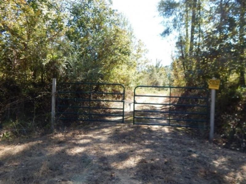 30 Acres In Adams County In Roxie : Roxie : Adams County : Mississippi