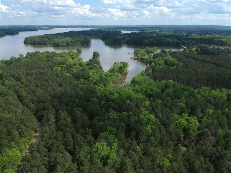 Wooded Lot, Waterfront Outparcel : Winnsboro : Fairfield County : South Carolina