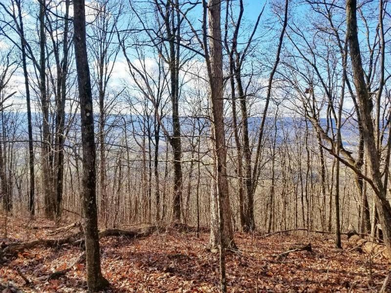 120 Acres, Bluff Views, Creek : Pikeville : Bledsoe County : Tennessee