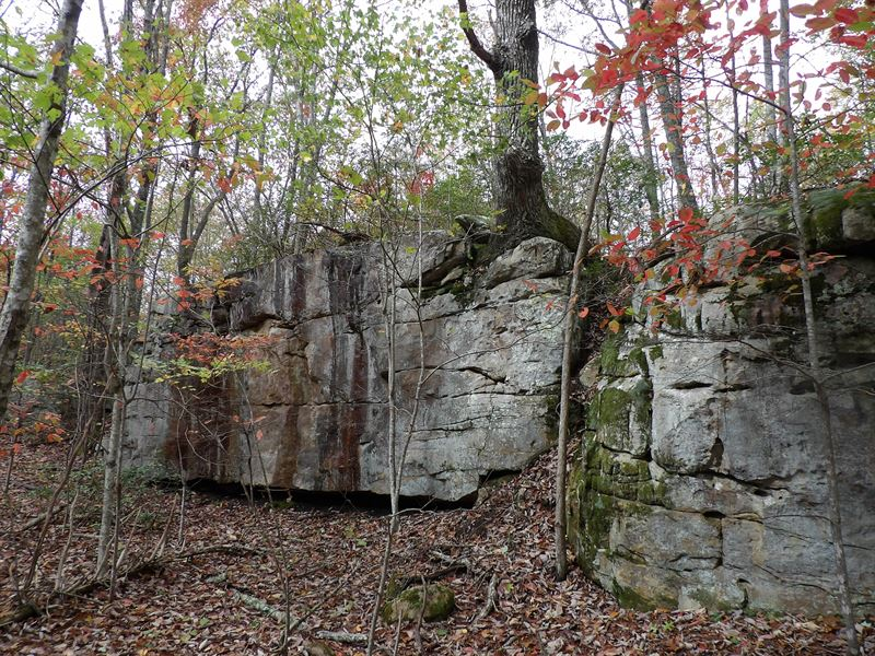 Rock Formations, Creek : Pikeville : Bledsoe County : Tennessee