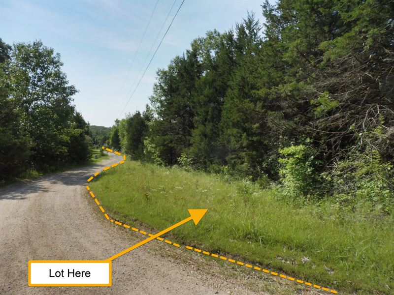 3.1 Private, Level, Wooded Acres : Williamsburg : Callaway County : Missouri