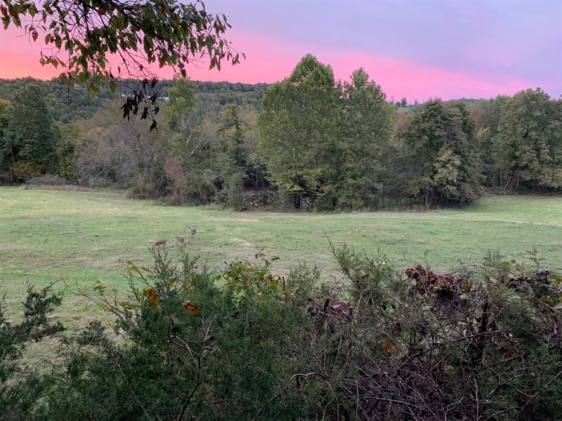 Madison County AR 80 Acres Hunting : Wesley : Madison County : Arkansas