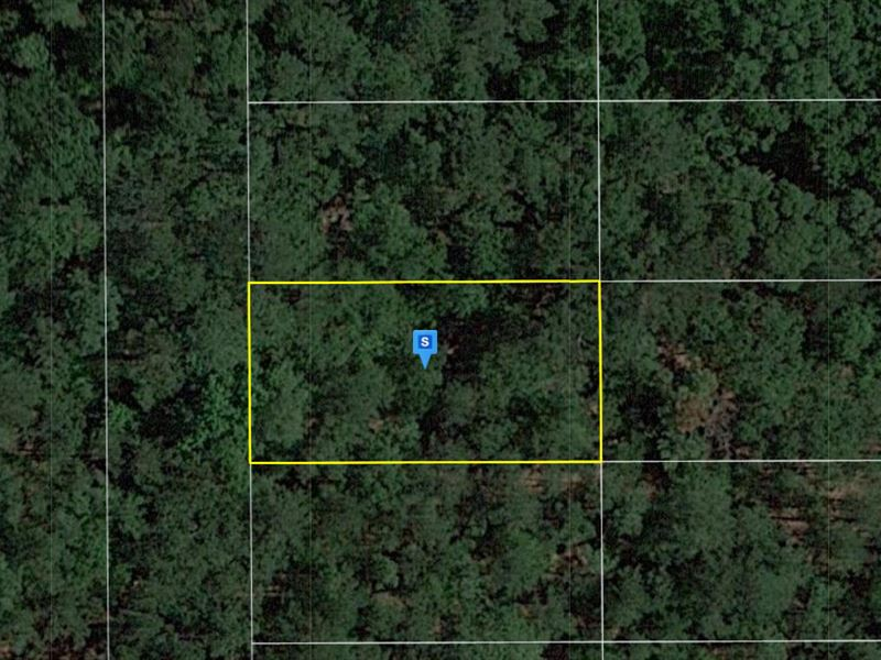 .25 Acre in Suwannee County, FL : Live Oak : Suwannee County : Florida