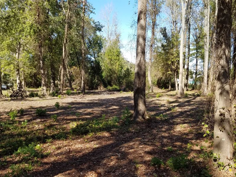 Vacant Land for Sale in NC : Washington : Beaufort County : North Carolina