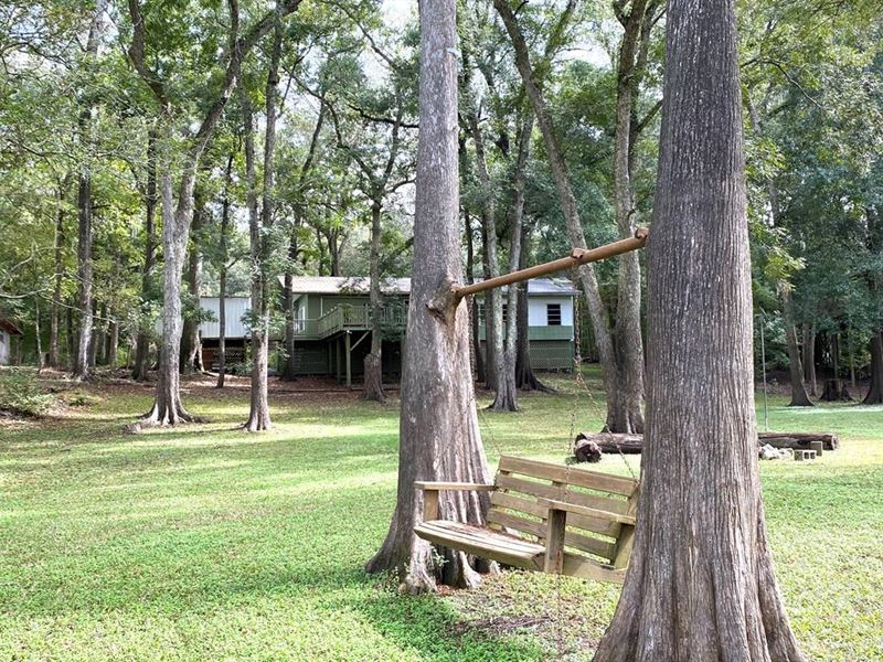 Ft, White, FL Riverfront Home : Fort White : Columbia County : Florida