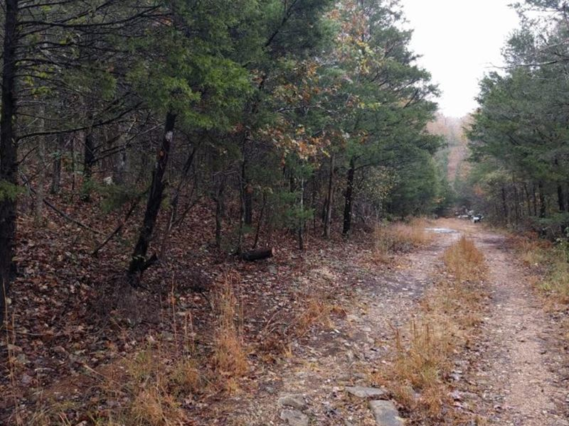 A Secluded Lot in Sharp County, AR : Hardy : Sharp County : Arkansas