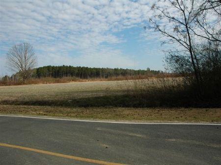 Quiet Country Farm : Fairmont : Robeson County : North Carolina