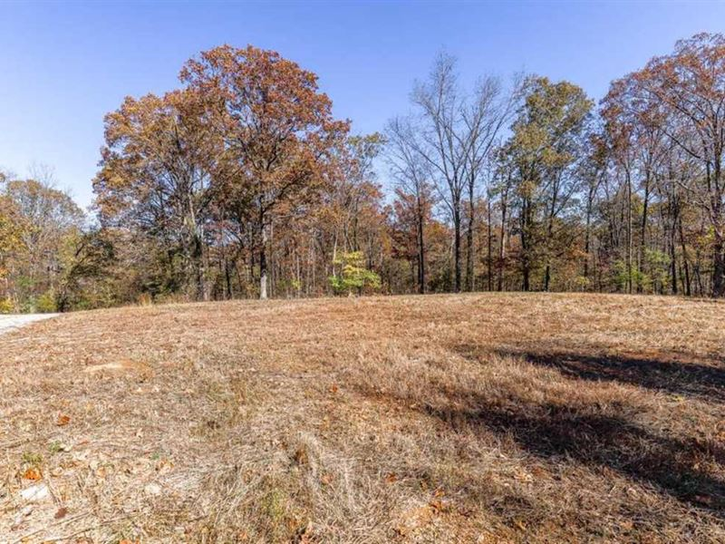 Residential Lot For Sale in Wappap : Wappapello : Butler County : Missouri