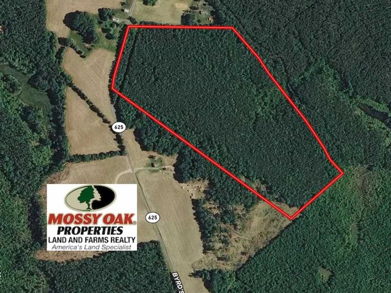 46 Acres of Recr : Newtown : King And Queen County : Virginia