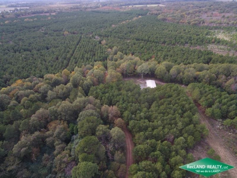 575 Ac, Hunting Tract With Small : Jigger : Franklin Parish : Louisiana