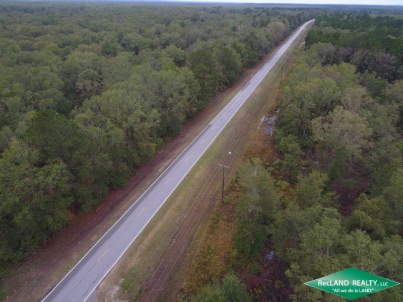 104 Ac, Bottomland Hunting Land NE : West Monroe : Ouachita Parish : Louisiana