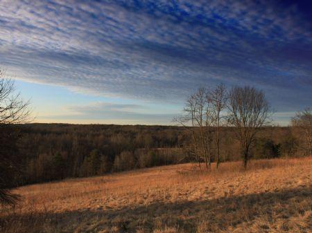 Dan River Farms : Milton : Caswell County : North Carolina