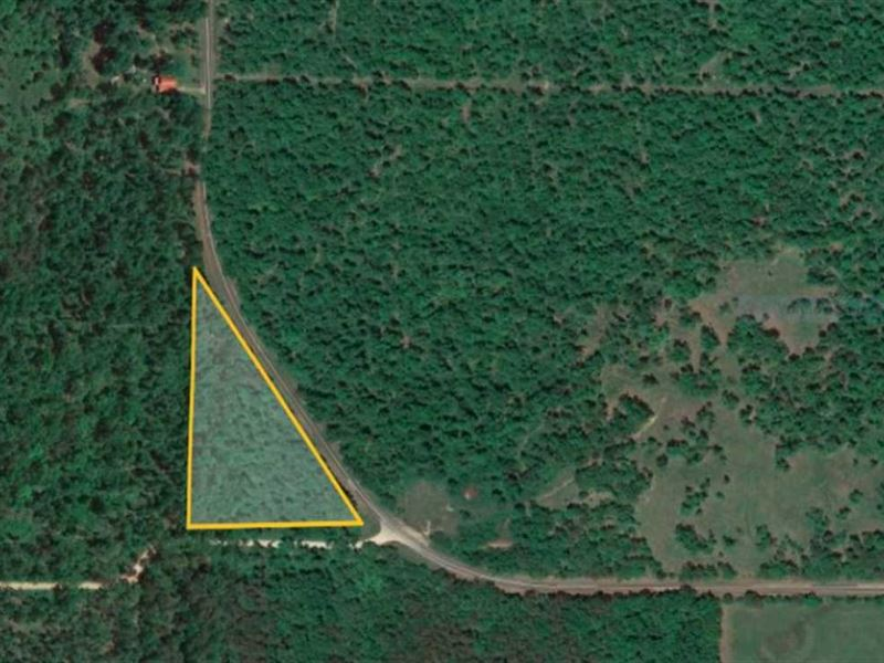 4 Acres For Sale in Ripley County : Doniphan : Ripley County : Missouri