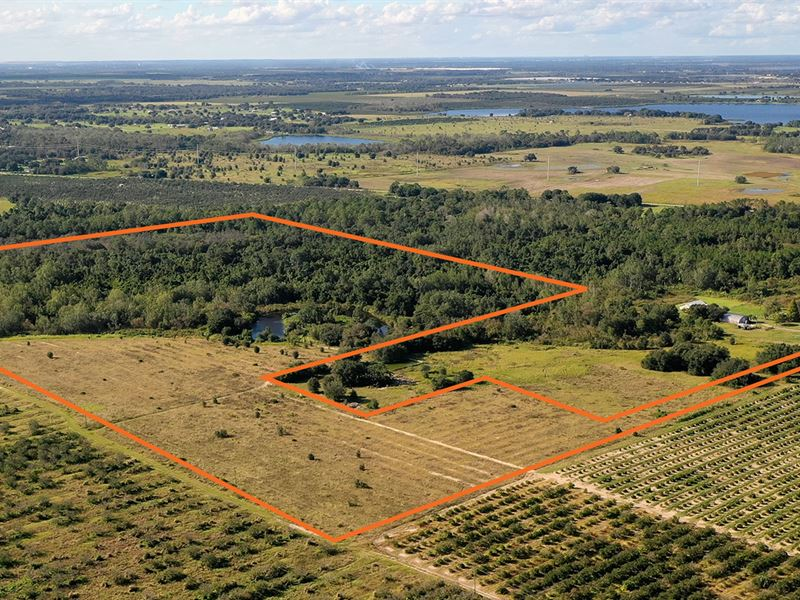 North Lake Buffum Acreage : Fort Meade : Polk County : Florida