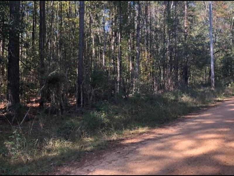 5 Acres In Pike County In Summit : Summit : Pike County : Mississippi