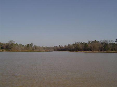 Holly Gate Farm : Thomasville : Thomas County : Georgia