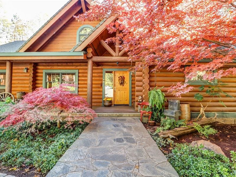 California Log Home Equine Property : Gold Run : Placer County : California