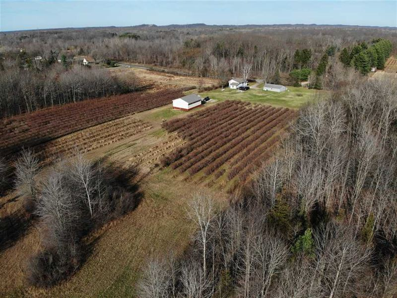 For Sale Incredible17.9 Acres : Coloma : Berrien County : Michigan
