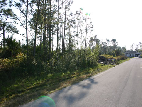 .43 Acre Duplex Lot : Palm Bay : Brevard County : Florida