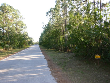.23 Acre Lot : Palm Bay : Brevard County : Florida
