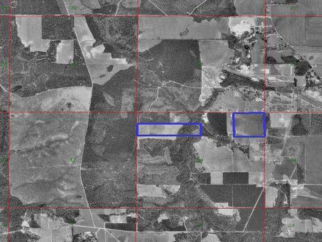 80 Dividable acres near Atmore : Atmore : Escambia County : Alabama