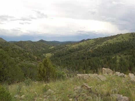 Mountain Living 35 Acres $89,900 : Guffey : Fremont County : Colorado