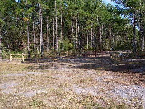 Little Horse Creek- 1123 Acres : Mcrae : Telfair County : Georgia