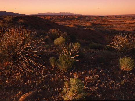94 Acre Ranch : Tuscon : Graham County : Arizona