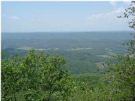 Western Brow Lot : Rising Fawn : Dade County : Georgia