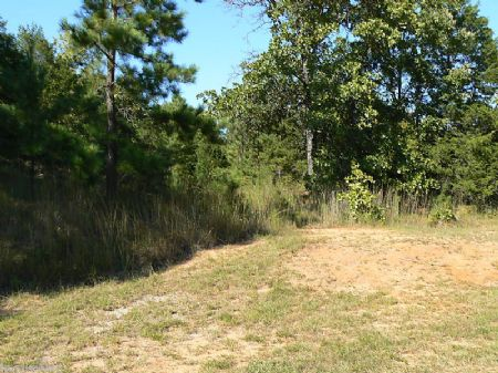 .36 Ac Buildable Lot 755 Ft To Lake : Saulsbury : Hardeman County : Tennessee