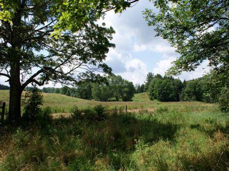 5 Acres- Catskill Skiing $24,900 : Jefferson : Schoharie County : New York