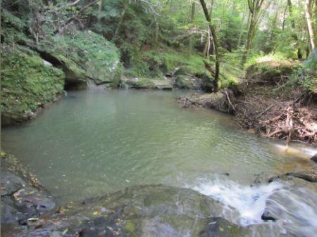 Caves, Cliffs And Fabulous River : Natural Bridge : Winston County : Alabama