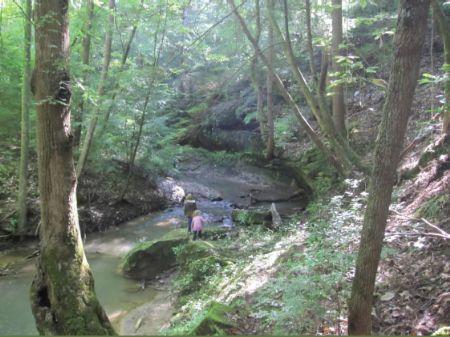 Feel The Beauty At Natural Bridge : Natural Bridge : Winston County : Alabama