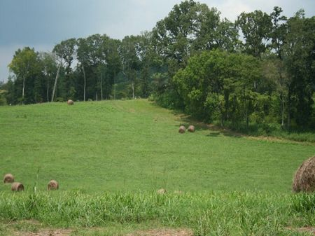 Meadow Homesite With Boatslip : Rockwood : Roane County : Tennessee