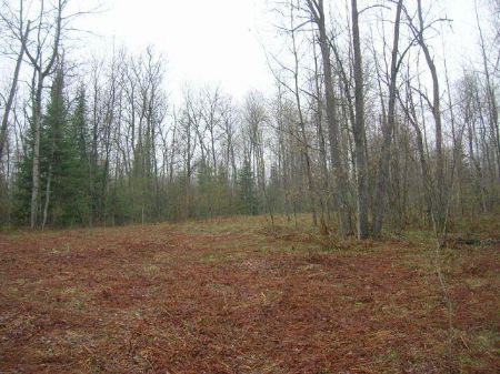 A Nature Lovers Paradise : Fredric : Crawford County : Michigan