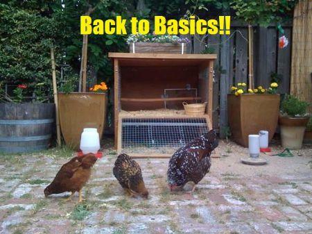 Beautiful 35.1 Acre Hobby Farm : Falkland : Wilson County : North Carolina