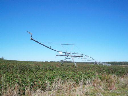 Productive Irrigated Farm : Cochran : Bleckley County : Georgia