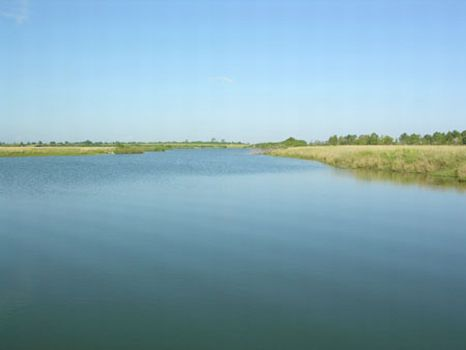 Dream Lakes Recreational Property : Fort Meade : Polk County : Florida