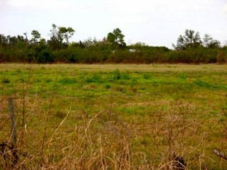 Creekside - Homesite : Fort Meade : Polk County : Florida